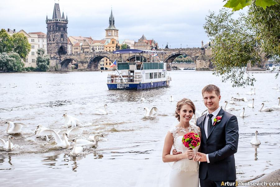 Wedding photo shooting
